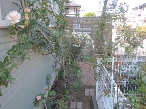 10月22日 東の庭