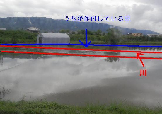 20120703.jpg