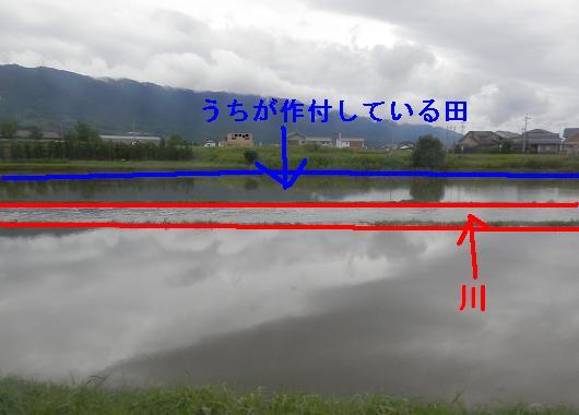 20120703_a.jpg