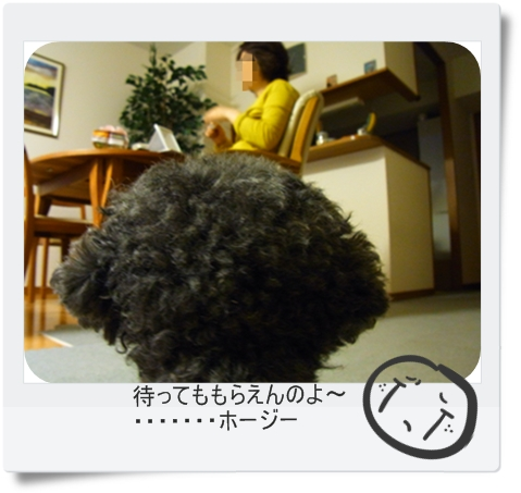 RIMG5672.jpg