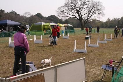 2013-03-10 tatebayasi