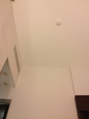 天井は広い