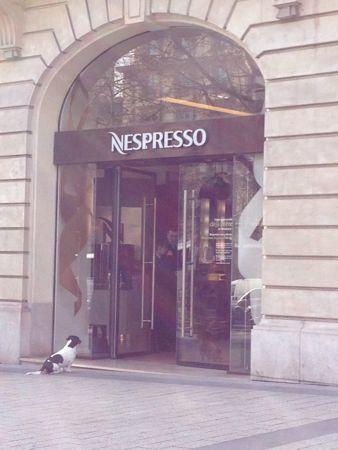 ネスプレッソと犬