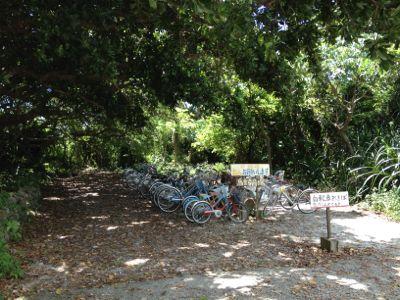 自転車が多数停まって