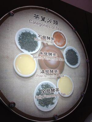 お茶に関する展示