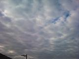 20130107pica.jpg