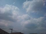 20130516pic.jpg