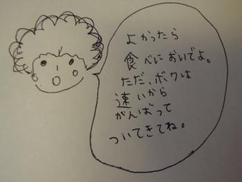 DSCN4187.jpg