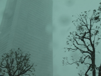 P2082910吹雪