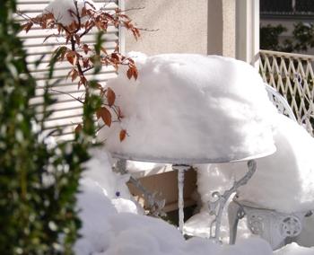 P1030384雪