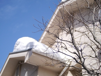 P1030380雪