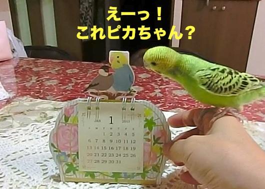ピカちゃん?