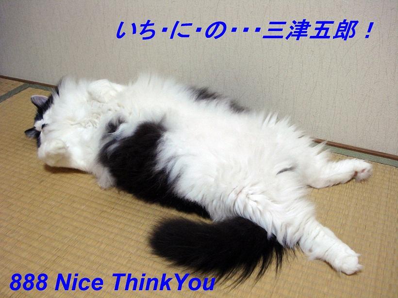 001_20120527204941.jpg