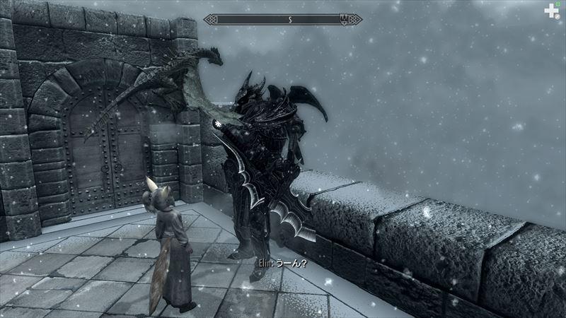 ドラゴン襲撃4