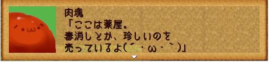 2013y06m12d_075258500.jpg