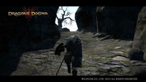 Dragon+s+Dogma+Screen+Shot+_8_convert_20120526215815.jpg