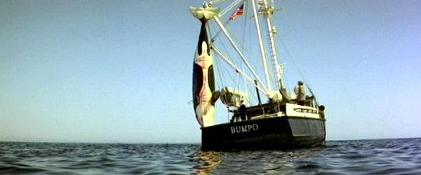 orca4.jpg