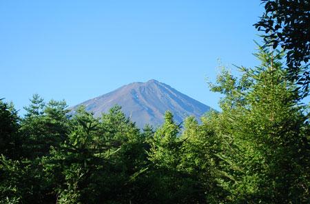 別荘地からの富士山