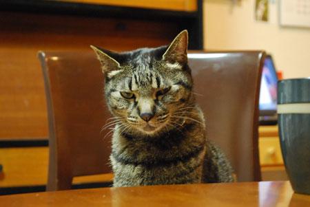ジャンジャン テーブルの前で