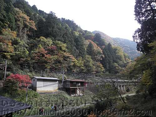 極楽橋駅と紅葉谷