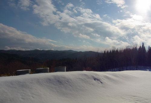 12月1日昼から積雪