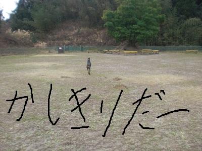 201212272134500f8.jpg