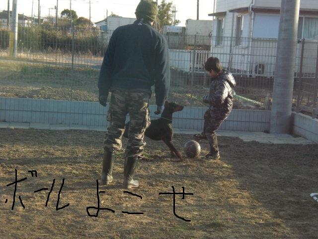 庭で遊ぶ子供とドル