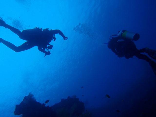バリ島 ダイブマスタートレーニング
