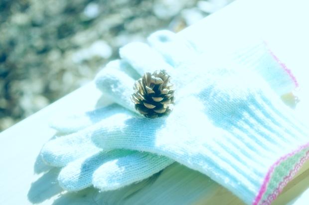 手袋したまま写真撮れないかな~?北海道はどうです?