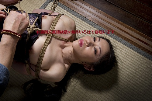 桟敷5 - コピー (2)
