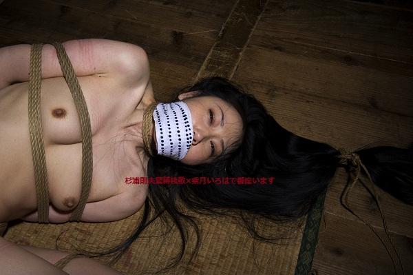 Iroha_320.jpg