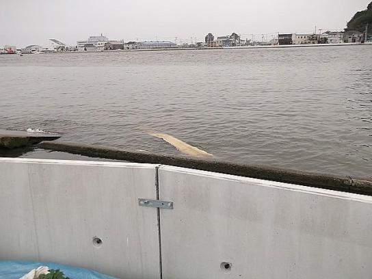 tonami_minato90_2012082003
