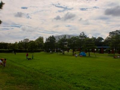 城南島海浜公園 (5)s-