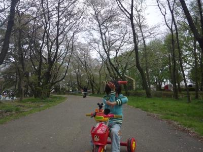 秋ヶ瀬公園0337