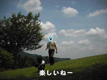 2012-06-01 13.03.42