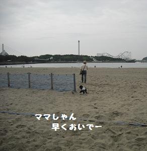 2012-06-18 09.02.32