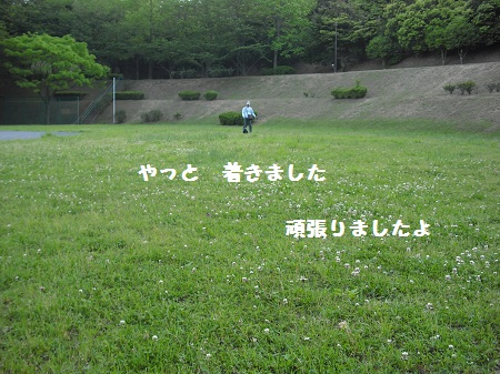 CIMG2911.jpg