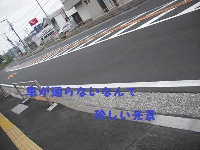 CIMG3603.jpg