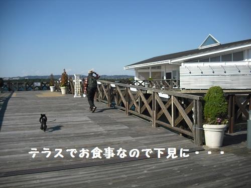 CIMG5474.jpg