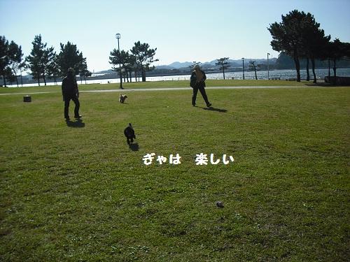CIMG5491.jpg