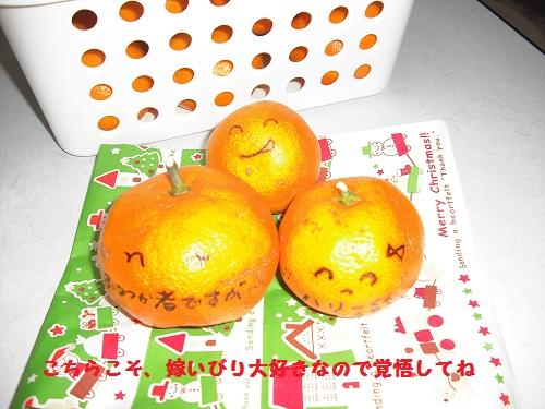 CIMG5836.jpg