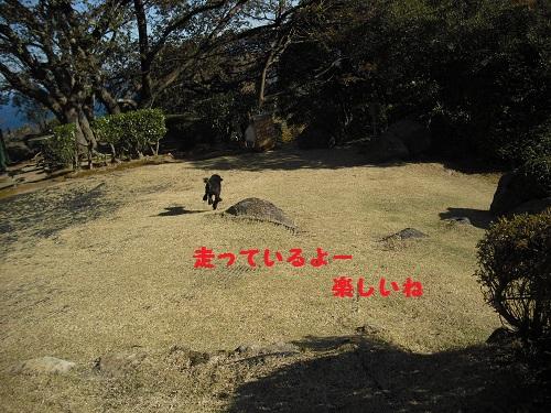 CIMG5897.jpg
