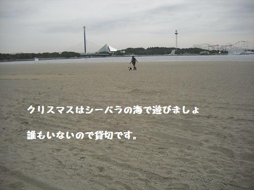 CIMG5955.jpg