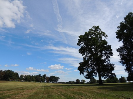 Valley Forge (5)