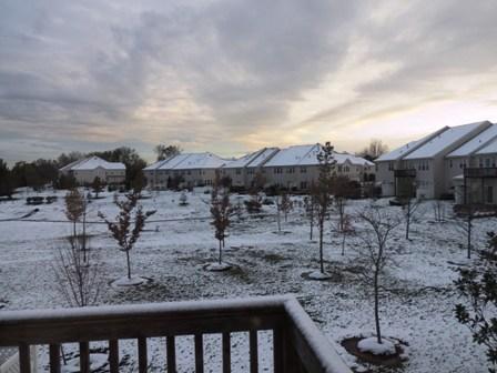 初雪一夜明けて