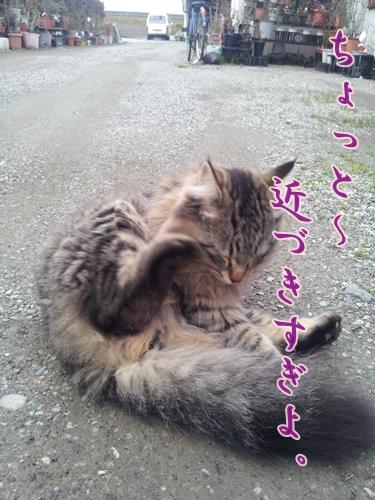 20120310_171137.jpg