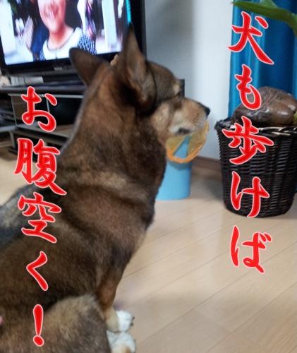20121013_200510.jpg