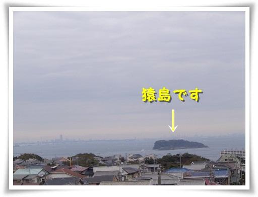 IMGP4000.jpg
