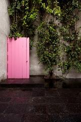 8roof_door.jpg