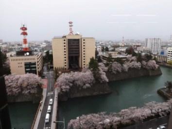 上から見た福井城跡